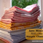 Sustainable Homemaking: Saving Money With a Few Simple Changes