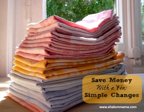 Sustainable Homemaking: Save Money With a Few Simple Changes