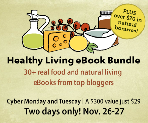 Cyber Monday Healthy Living Bundle 34 eBooks + $70 bonuses for $29!