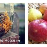 Natural Wellness Link Love: July 2013