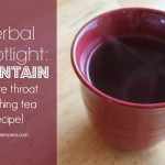 Herbal Spotlight: Plaintain (and Sore Throat Soothing Tea Recipe)