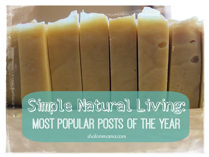 Simple Natural Living: 15 Most Popular Posts of the Year