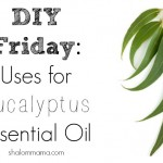 DIY Friday: Uses for Eucalyptus Essential Oil