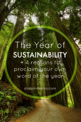 The Year of Sustainability (+ 4 Reasons to Proclaim Your Own Word of the Year)