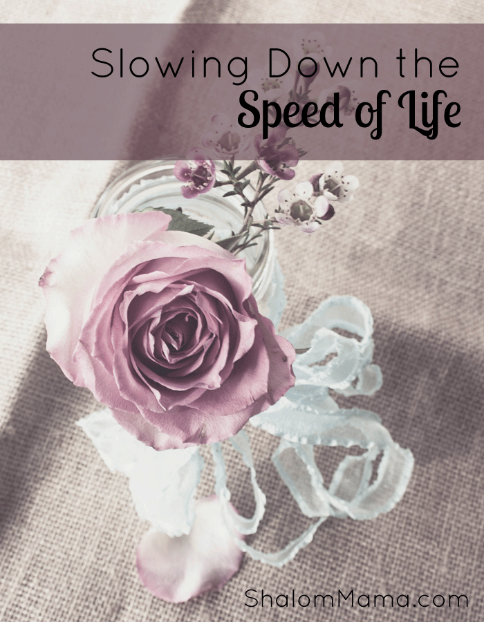 Slowing Down the Speed of Life | ShalomMama.com