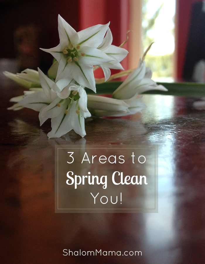3 Areas to Spring Clean You | ShalomMama.com