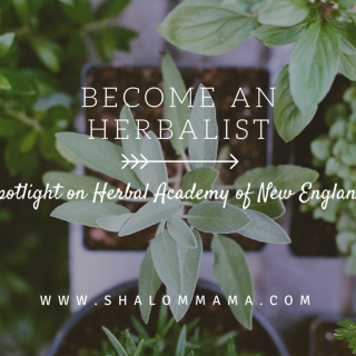 Become an herbalist: spotlight on Herbal Academy of New England