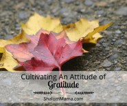Cultivating An Attitude of Gratitude | ShalomMama.com